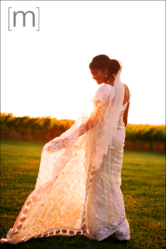a photo of the bride at sunset at a wedding at sue ann staff winery in niagara on the lake