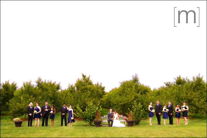 a photo of a wedding party at sue ann staff winery in niagara on the lake