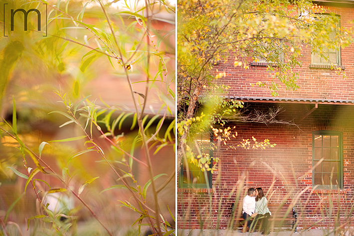 a photo of a couple kissing hidden behind the leaves at a fall engagement at brickworks toronto