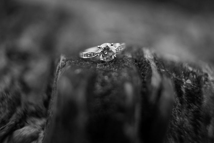 a photoshoot of the ring at an engagement at emerald lake at yoho park in bc