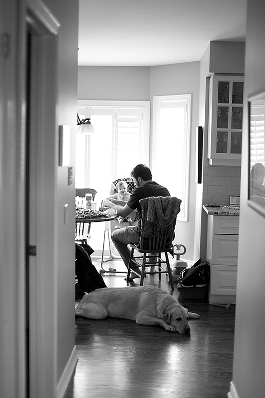 a photo of a dog resting while baby is being fed at a fall family session in uxbridge ontario