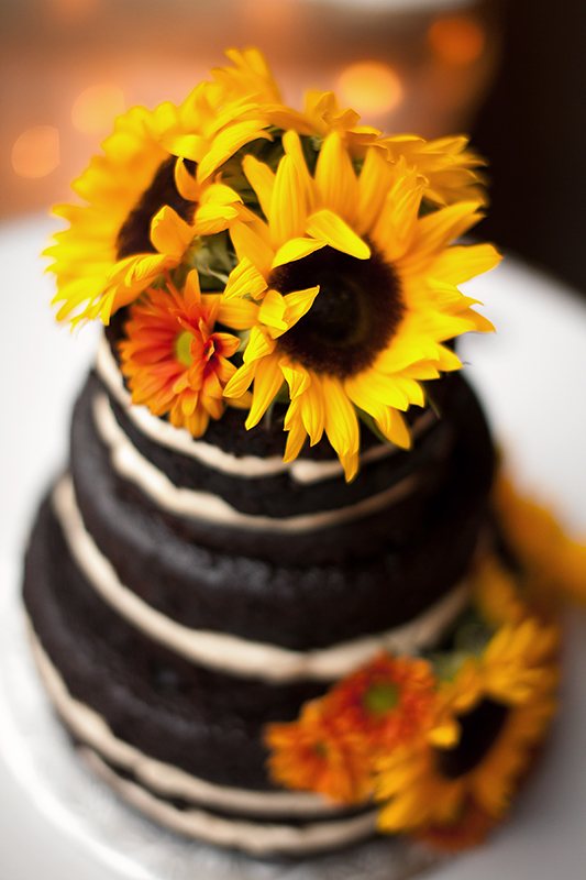a wedding photo of a brides cake at the arboretum in guelph ontario
