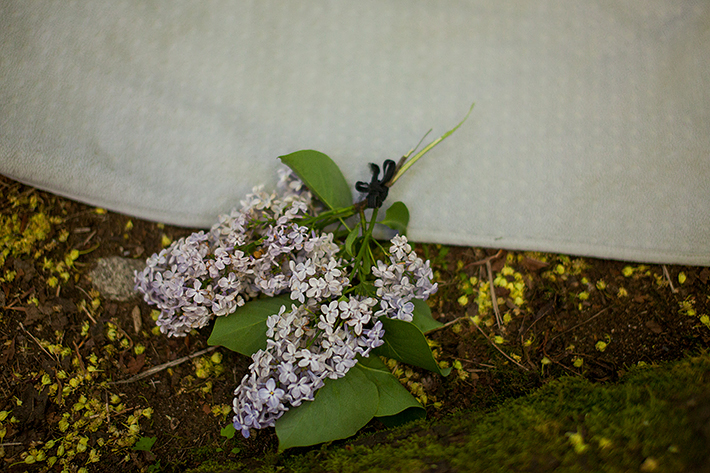 a spring engagement photo of lilacs on a blanket at pacific spirit park vancouver british columbia