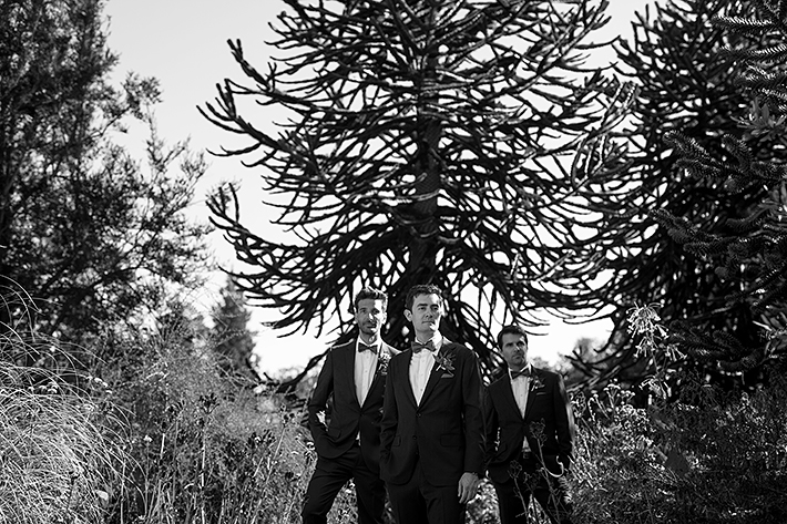 a summer wedding photo of the groomsmen in vandusen gardens in vancouver british columbia