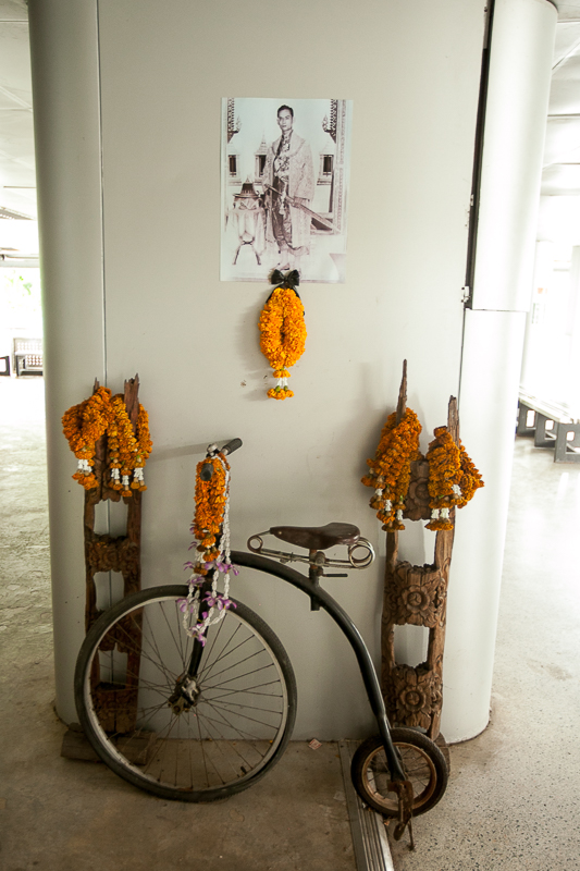 a travel photo of a bicycle with orange flowers in bangkok thailand