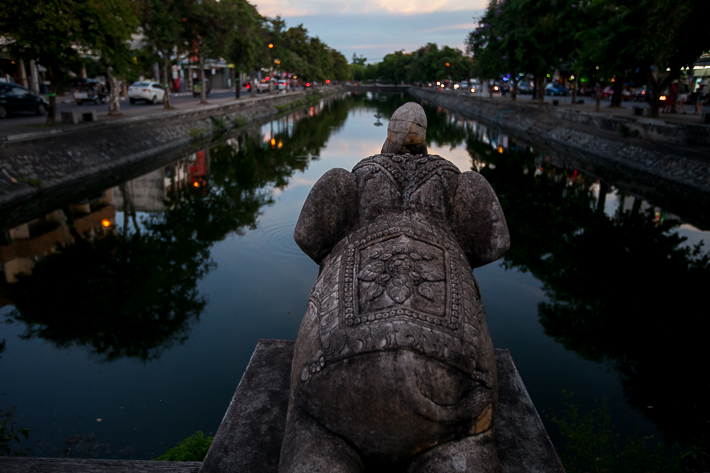 a travel photo of an elephant statue on still water in chaing mai thailand