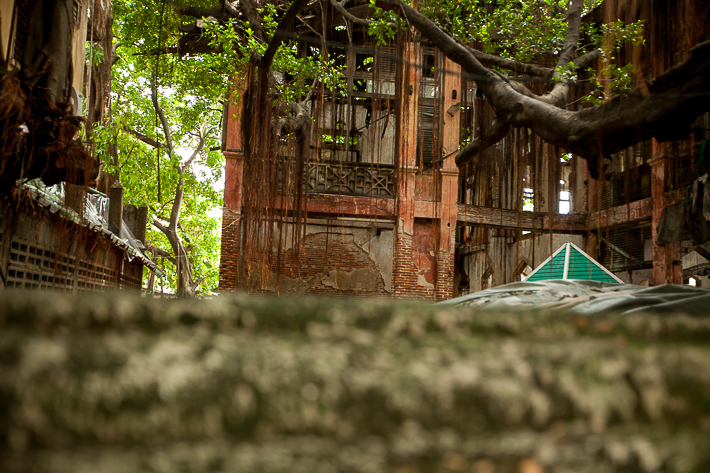 a travel photo of an interesting alley with treesat in bangkok thailand
