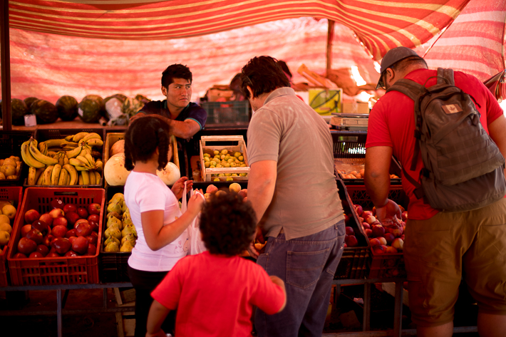 a travel photo of a fruit market in san pedro chile south america
