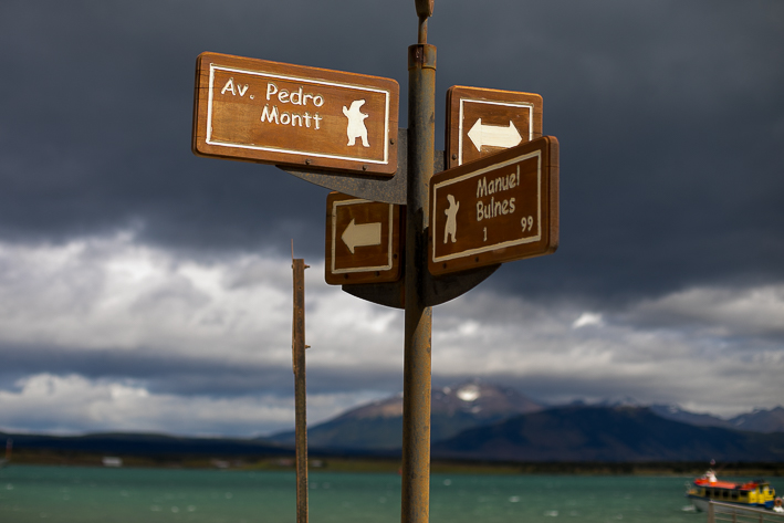a travel photo of the street signs with polar bear on each sign puerto natales chile south america