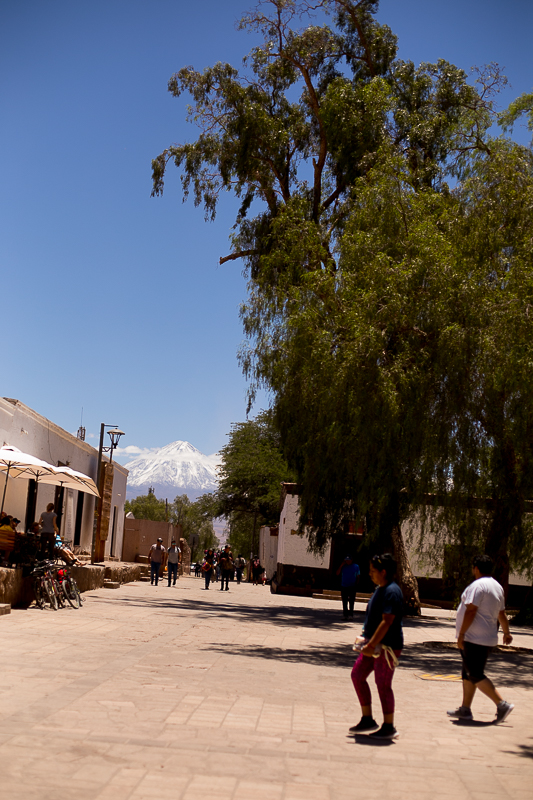 a travel photo with locals and the volcano in san pedro chile south america