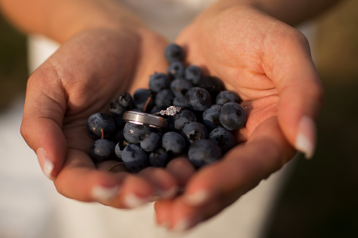 a summer wedding photo at the secret garden blueberries in abbotsford british columbia